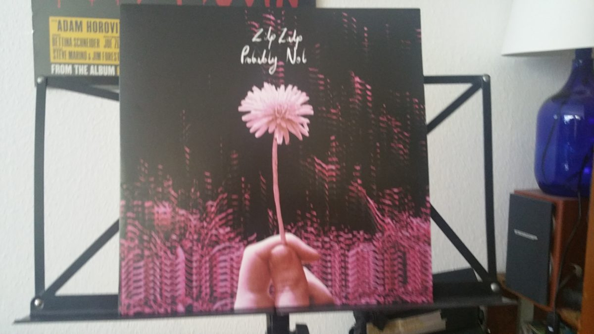 review: ZILP ZALP – auf den Fersen LP / split/PROBABLY NOT LP